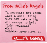From  Hallie's Angels - 'A mosquito net seems like a small thing that can make a big difference to help fight malaria!' -Kari, Bethlehem River Glove, IL